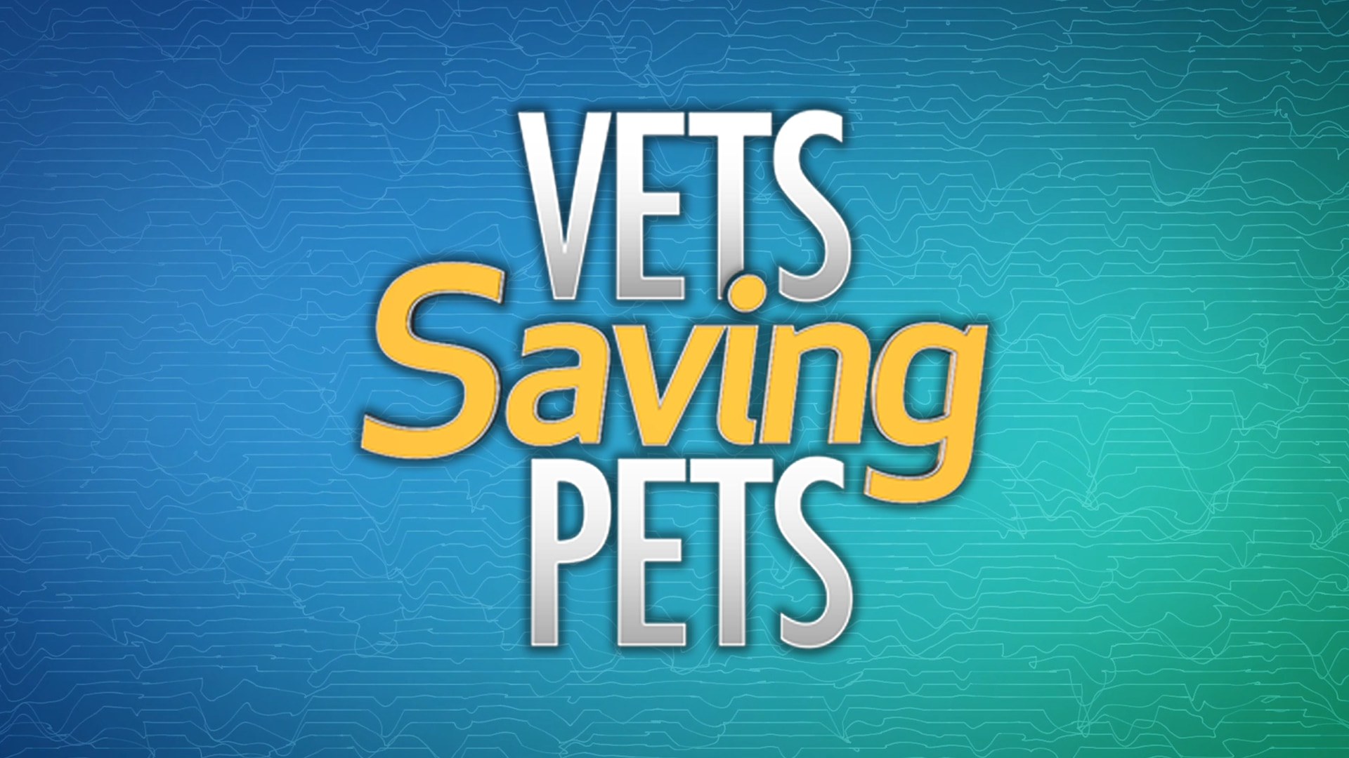 Vets Saving Pets on FREECABLE TV