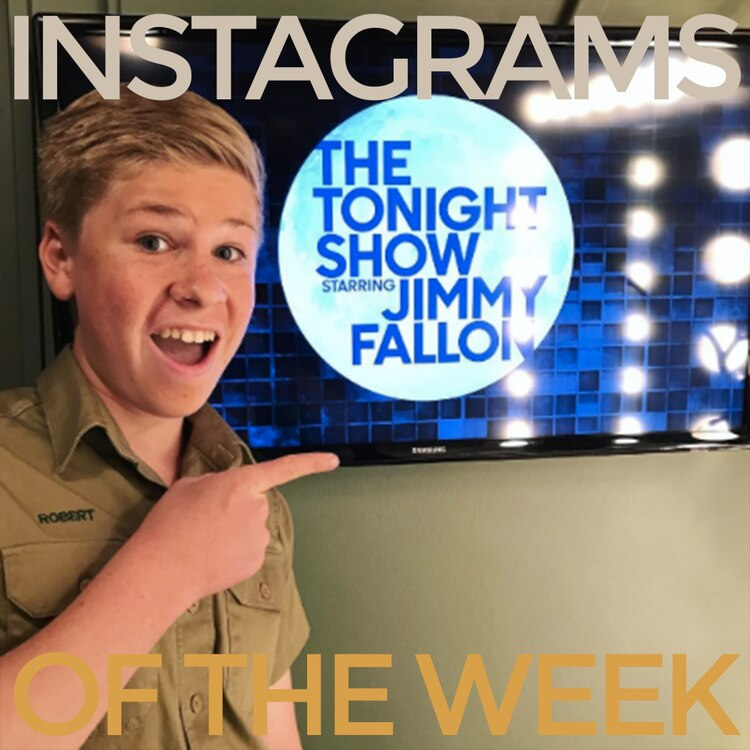 Instagrams of the Week: 6/5/17